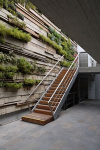Green plants for a healthier office